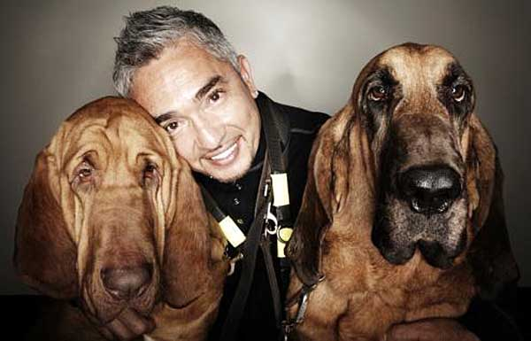 cesar millan family. Cesar Millan will have
