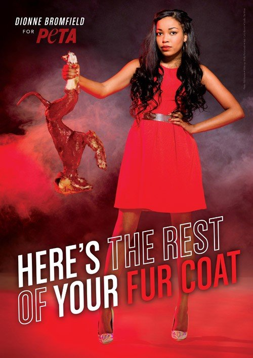 "7f20a448464 DIONNE BROMFIELD HOLDS SKINNED FOX AND ANNOUNCES: ""HERE'S THE REST OF YOUR  FUR COAT"""