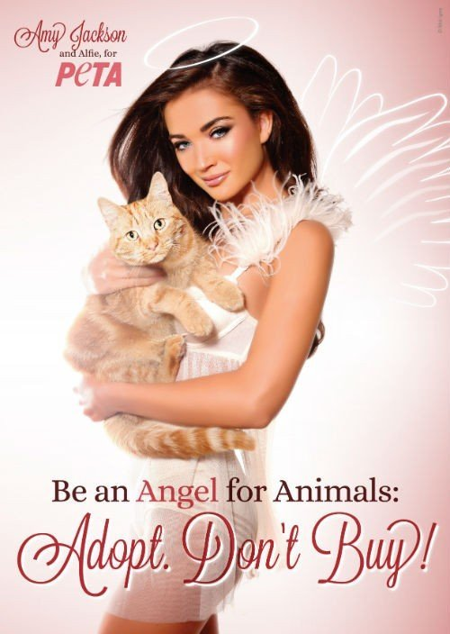 Amy-Jackson-Angel-Ad_INDIA_FIN