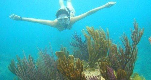 turks-caicos-snorkeling1